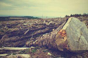 Non-degraded environment