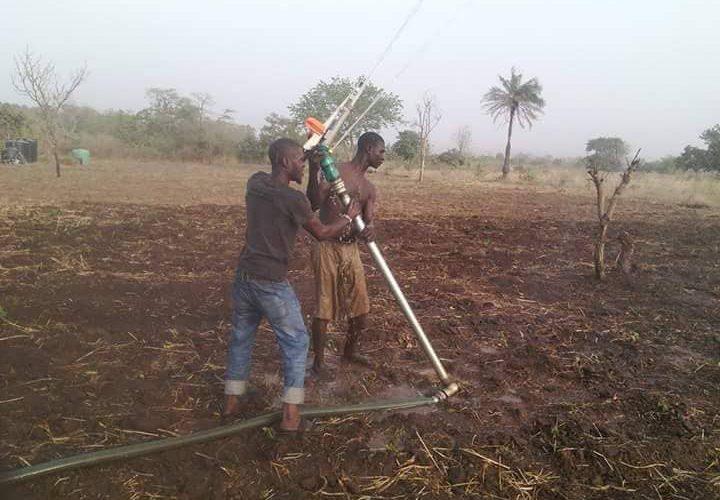 Dry Season Farming: A Guide