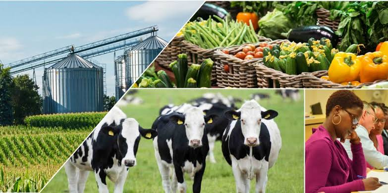 Top Agribusinesses in 2020