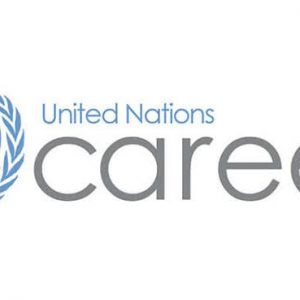 GET YOUR DREAM JOB AT THE UNITED NATIONS