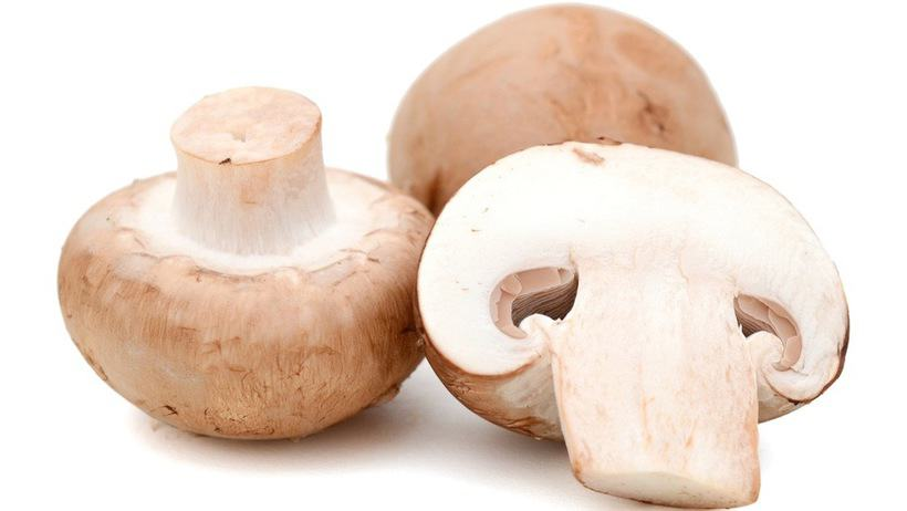 Mushroom and weight loss