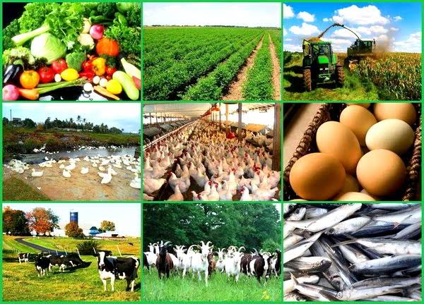 HOW ACCESSIBLE IS YOUR AGRIBUSINESS