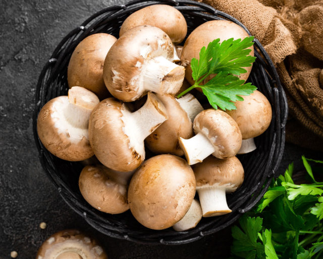healthy edible mushrooms