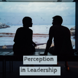 Perception in Leadership